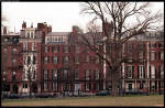 Boston Rowhouses