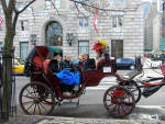 New York City - Carriage Ride in Central Park