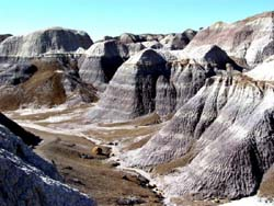 Petrified Forest - Blue Mesa